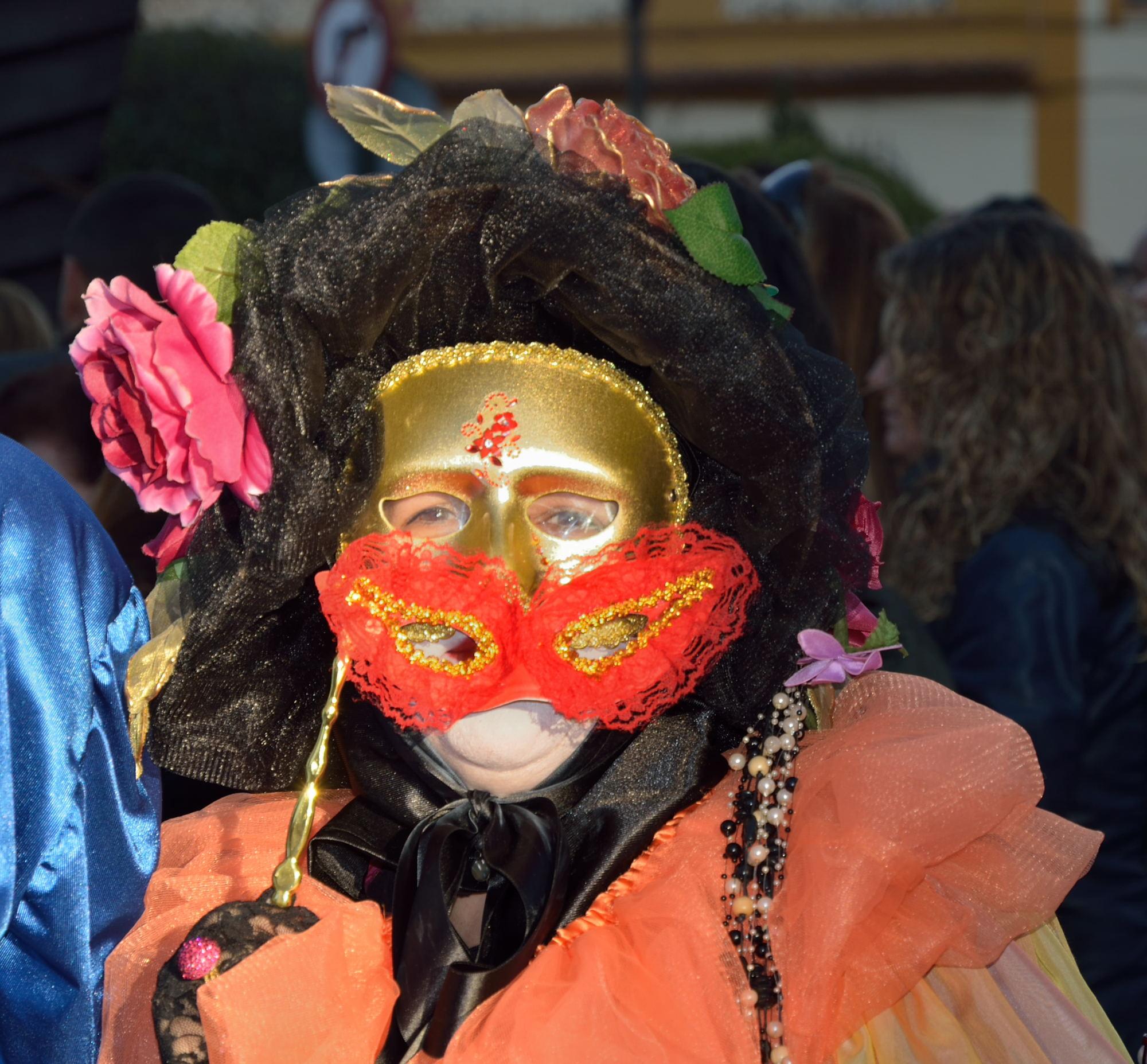 carnaval-2013-arenas-de-san-pedro-65
