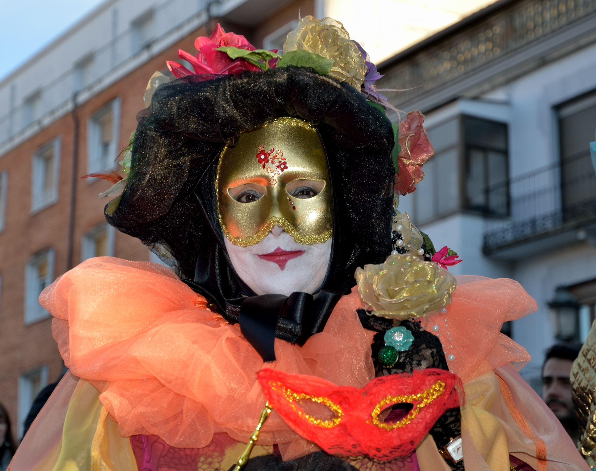 carnaval-2013-arenas-de-san-pedro-67